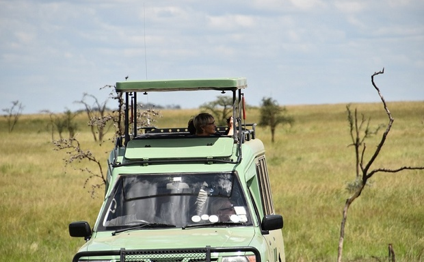 Tanzania migration safari with children